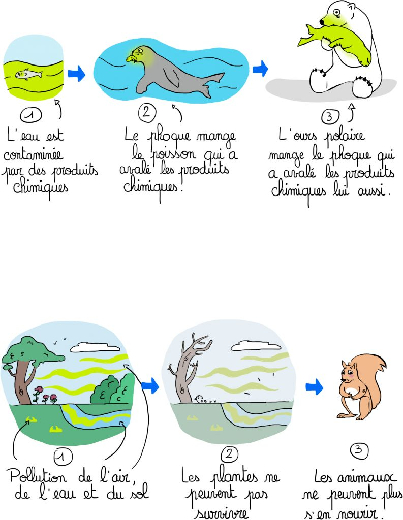 dessin enfant - cycle pollution des habitats des animaux