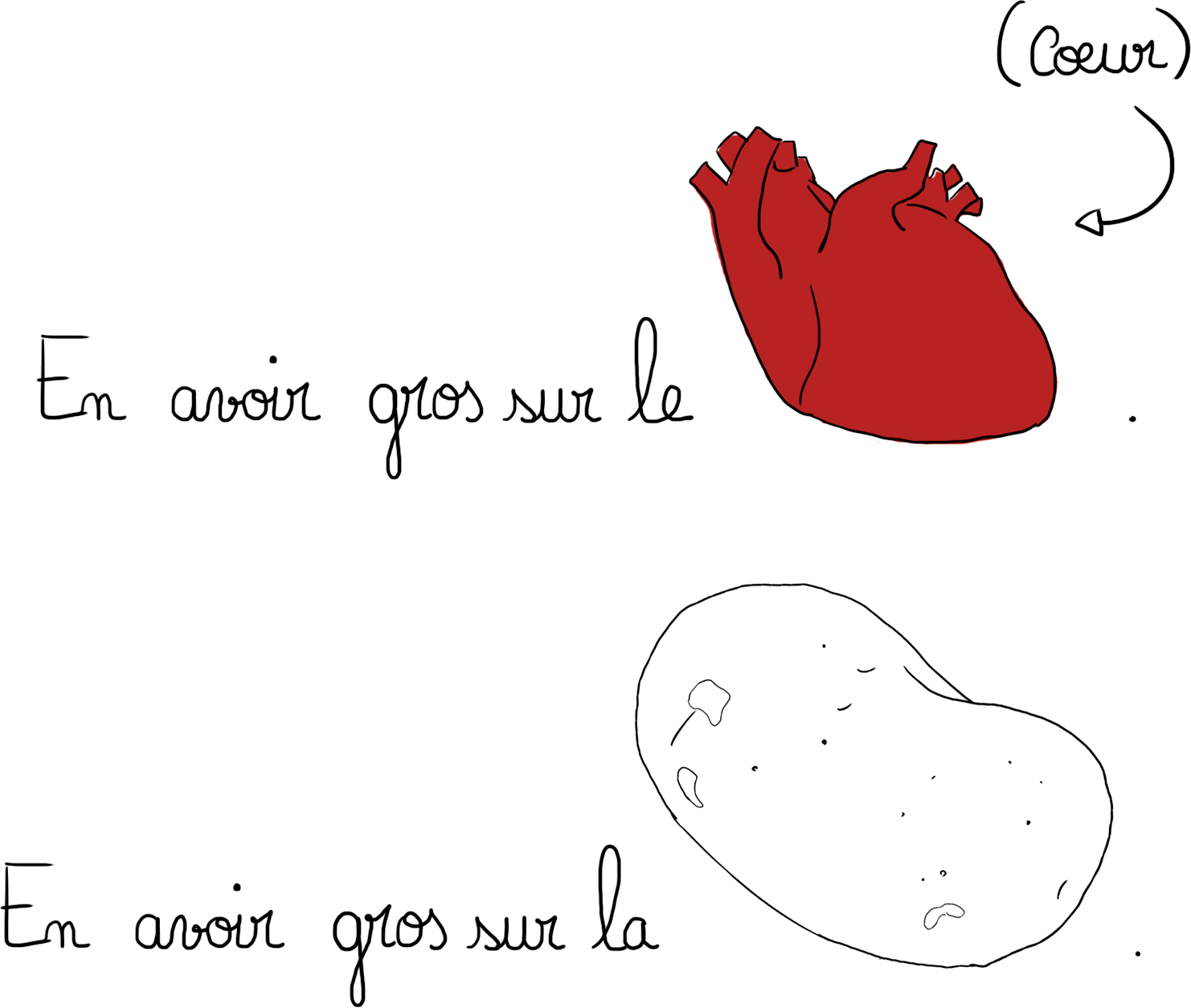 forme coeur et patate