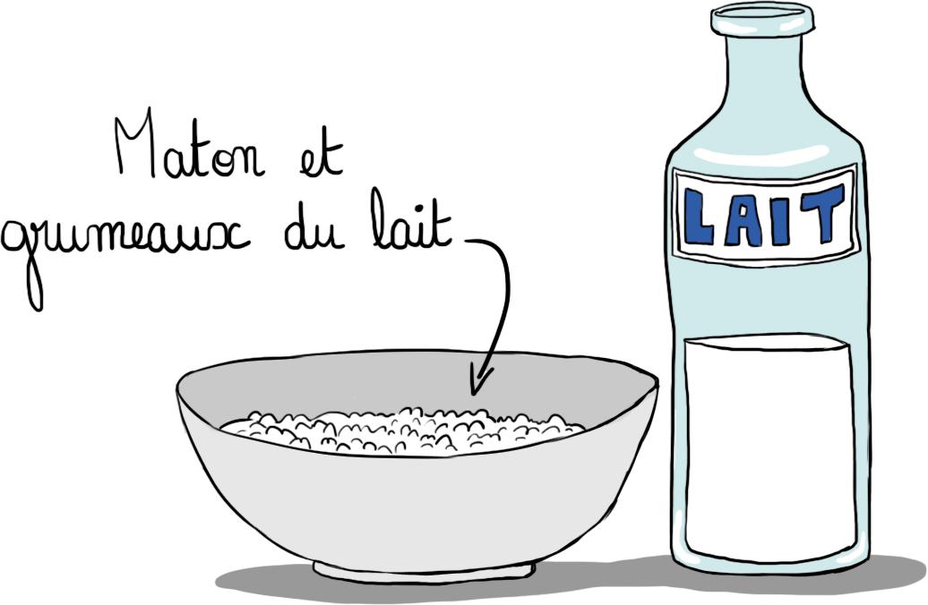 maton et grumeau du lait